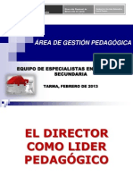 DIRECTOR LIDER PEDAGÓGICO