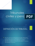 Tribunales Civiles y Penales