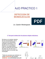 TP Deteccion de Biomoleculas
