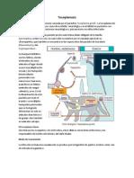 Taboada Juanita Resumen Toxoplasmosis