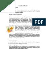 EL FIELTRO O PAÑO LENCI.docx