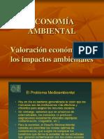 Valoracion Economica de Los Impactos