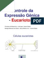 Controle da Expressão Gênica_Eucariotos