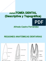01-anatomiadental-120918123331-phpapp02