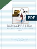 Macro y Micro Ambiente de Domicopias Ltda