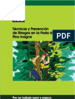 Tecnicas y Prevencion de Riesgos en La Poda de Pino Insigne