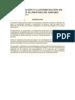 LA ACUMULACIÓN Y LA INTERVENCIÓN DE TERCEROS EN EL PROCESO DE AMPARO