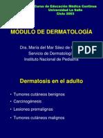 2. Dermatología del Adulto