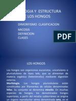 Presentación.HONGOS