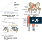 Clinical Notes of Lower Limb