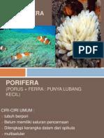 2 Materi Porifera Dan Coelenterata