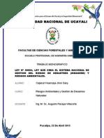 MONOGRAFIA DE RIESGOS.doc