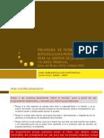 La programación acción integral (PAI)