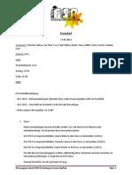 Protokoll 17.04.2013