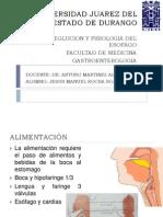 esofago fisiologia.pptx
