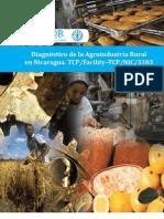 Diagnostico Agroindustria Rural Nicaragua