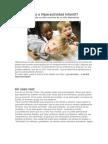 Nerviosismo o Hiperactividad Infantil