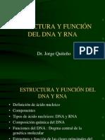 Estructura y función del DNA y RNA.ppt