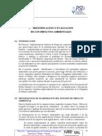 05  V IDENTIFICACIÓN DE LOS IMPACTOS  AMBIENTALES 1