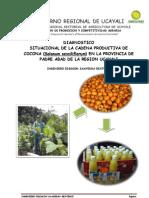 Cadena Productiva de La Cocona en Pucallpa