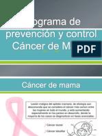 Programa de Prevencion Cancer de Mama..1