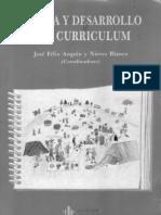 Angulo Rasco - A Que Llamamos Curriculum001 (1)