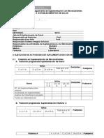 Formato Monitoreo Mmn