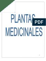 Plantas Medicinales Alejandro