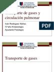FISIOLOGIA RESPIRATORIA.Transporte de gases y circulación pulmonar