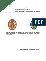 Mineria Informal.docx