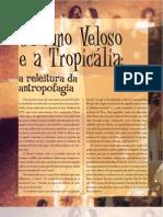 Caetano Veloso e a Tropicália
