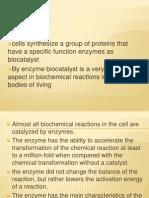 Biocatalyst Dwi