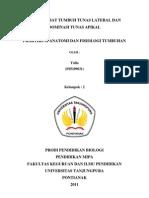 Penghambat Tumbuh Tunas Lateral Dan Dominasi Tunas Apikal (Fix)