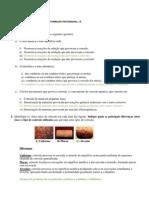 Ficha de aplicação de corrosão - para teste