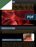 Clase Manchas de Sangre