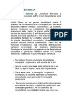 Fimoza + Circumcizie