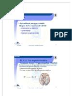 5rnyrp_som.pdf