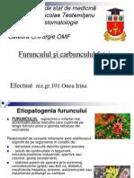 Etiopatogenia furuncului
