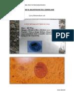Practical Parasitology 8