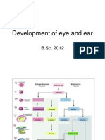 Development of Eye and Ear