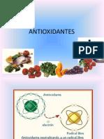 Exposicion capacidad antioxidante