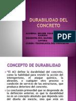 Durabilidad Del Concreto Exposicion