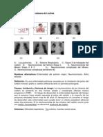 neumoconiosisdelosminerosdelcarbn-110427214400-phpapp02