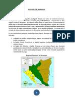 UTR Nicaragua