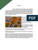Bacterio Log A
