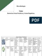 tabladebacteriasgrampositivasynegativas-111112074803-phpapp02