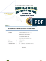 INFORME DE PETROLOGÍA FINAL