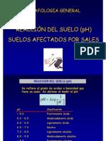 Acidez Power Point - Venezuela