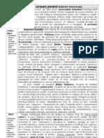 SUBIECT_III_2013_doua personaje_COMEDIA.doc