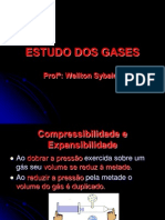 Estudo Dos Gases Power Point